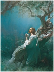 Jesus Praying Gethsemane Mormon